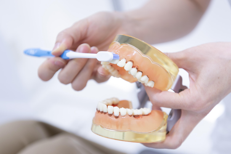 「吉川医療モール歯科」の予防治療